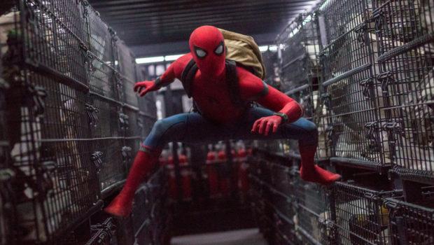 Spider-Man v filmu Spider-Man prihod domov Spider-Man homecoming